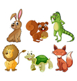 Four-legged animals vector image vector image