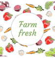fresh from the farm produce banner vector image vector image