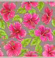 hibiscus pattern vector image vector image