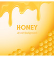 honey background for advertising vector image vector image
