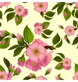 Seamless pattern with spring apple blossom vector image vector image