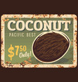 coconut nuts metal rusty plate food store price vector image vector image