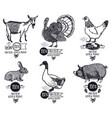 farm product chicken goat duck pig turkey rabbit vector image