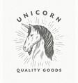 line art unicorn vector image vector image