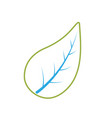 line natural leaf of plant and exotic botany vector image vector image