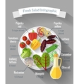 Salad cooking infographics vector image