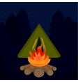 The camp campfire at travel night vector image