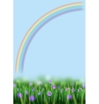 Flowers and Rainbow vector image
