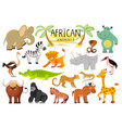 african animals collection vector image