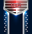 american backgrounds design vector image vector image