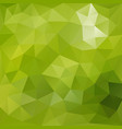 lush green polygonal background vector image