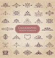 ornate calligraphic design elements vector image vector image