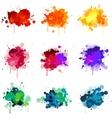 paint splat s vector image vector image