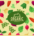 poster with beet and carrot vegetables vector image