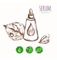 Serum Leaf Cosmetic Concept vector image