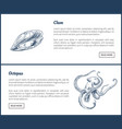 marine creatures clam and octopus landing page vector image