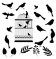 of bird cage vector image