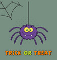 smiling purple halloween spider character vector image