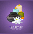 with cartoon beauty and spa vector image vector image