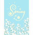 blooming tree branches vector image vector image