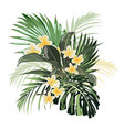 composition with yellow plumeria flowers vector image vector image