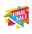 final sale concept promotion banner discount vector image vector image