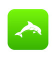 jumping dolphin icon digital green vector image vector image