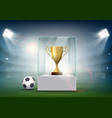 soccer ball with the golden cup of championship vector image vector image