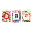 tropical summer banner set poster card vector image vector image
