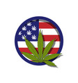 usa flag with cannabis vector image vector image