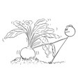cartoon gardener or farmer trying to pull out vector image vector image