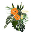 composition with orange hibiscus vector image vector image