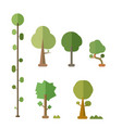 flat trees set with bush and isolated white vector image vector image