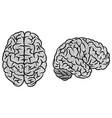 gray brain fingerprint silhouettes vector image vector image