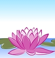 waterlily vector image vector image