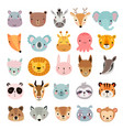 big animal set cute faces hand drawn characters vector image