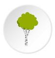 birch icon circle vector image vector image