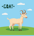 cute goat farm animal character farm animals vector image vector image