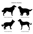 dog breed silhouette pet icon set sheped dog vector image vector image