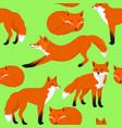 fox cartoon seamless pattern vector image