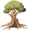 majestic tree vector image