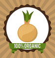 organic healthy food design vector image vector image