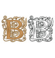 vintage initial letter b with baroque decoration vector image