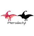 a pterodactyl on white background vector image vector image