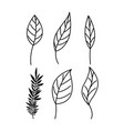 branch with leafs decorative icons vector image vector image