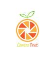 camera fruit logo vector image vector image