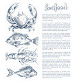 lobster and crayfish bream or bass seafood poster vector image