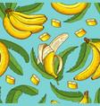 seamless pattern bananas vector image vector image