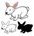 set rabbit cartoon vector image