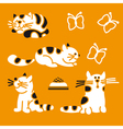 Striped cats vector image vector image